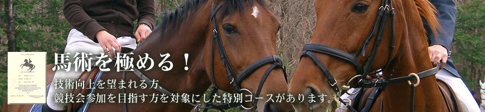 乗馬クラブ ドレッサージュ・ステーブル・テルイ l 埼玉県岡部町